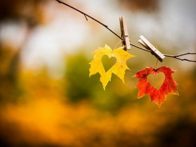 fall-hearts-autumn-leaves-love-two-hearts