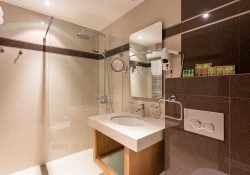 Senior Suite_bathroom